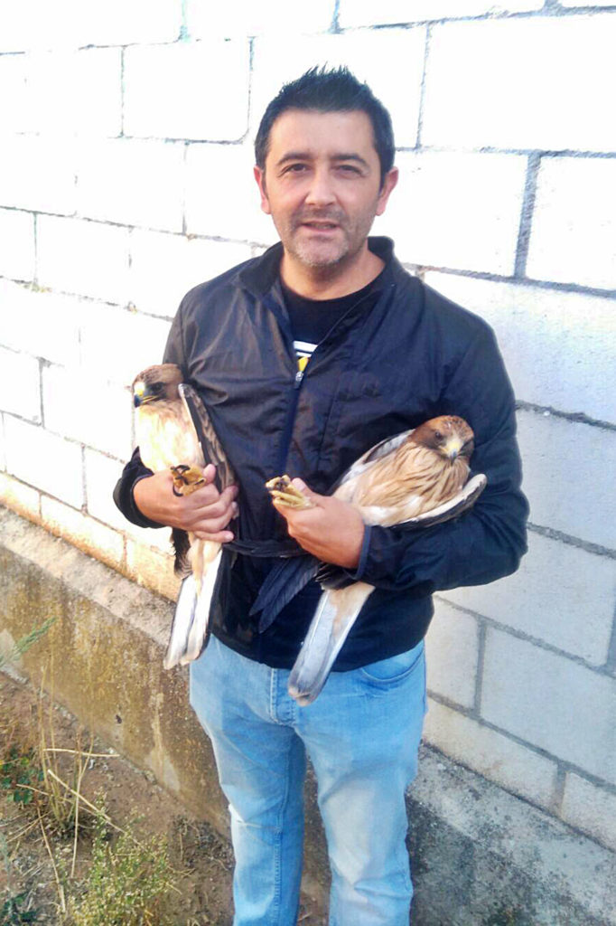 Autor de la entrevista con dos águilas calzadas de morfo claro momentos antes de realizar la biometría y el estudio de plumaje.